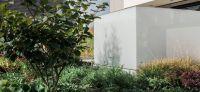 06_vorgarten_stauden_sichtschutz_glaswand