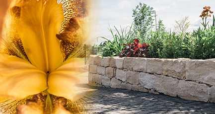 gartenplanung-leipzig-kalkstein-natursteinmauer